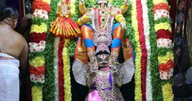 శ్రీ మహావిష్ణు అవతారంలో భక్తులకు దర్శనమిచ్చిన లక్ష్మీనరసింహస్వామి